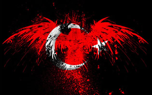 Türk Bayrağı Kartal Arkaplan, Turkish Flag Wallpaper 1440x900